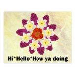 4 hola hola cómo usted que hace postales