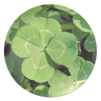 4 Leaf Clover Good Luck Charm Collectors Plates