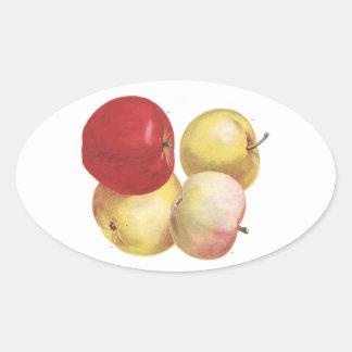 4 manzanas del vintage ilustraron al pegatina
