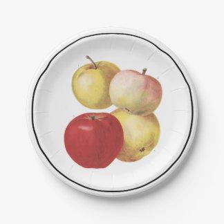 4 manzanas del vintage ilustraron la placa de plato de papel de 7 pulgadas