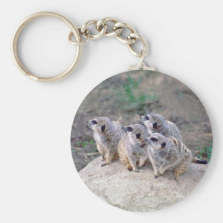 4 Meerkats Looking Left Keychain