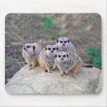 4 Meerkats Peering Mousepad