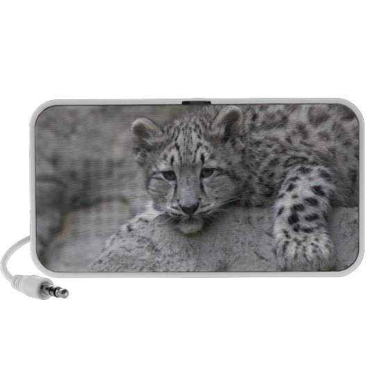 4 month old Snow leopard cub draped over a rock Speaker