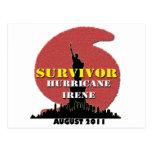 #4 NYC Survived Hurricane Irene Postcard