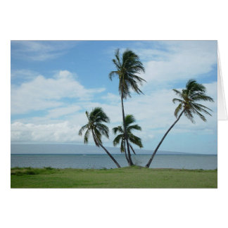 4 Palms Greeting Card