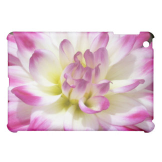 4 Raspberry Edged Dahlia iPad Mini Covers
