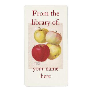 4 vintage apples illustrated bookplate