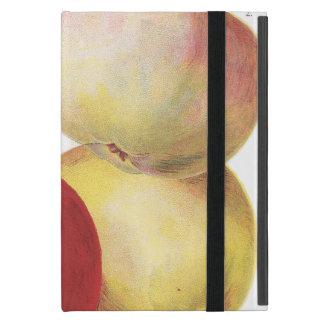 4 vintage apples illustrated case
