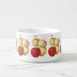 4 vintage apples illustrated cup bowl