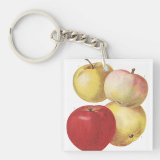 4 vintage apples illustrated keychain