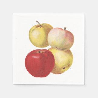 4 vintage apples illustrated napkin