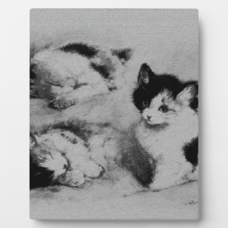 4 where the kitten wakes up photo plaques
