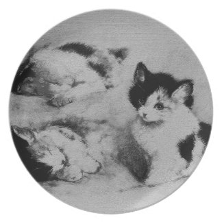 4 where the kitten wakes up party plate