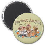 4 Yorkie Perfect Angels gifts Fridge Magnets