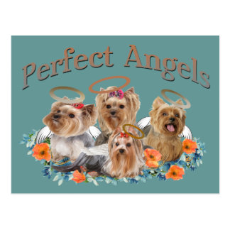 4 Yorkie Perfect Angels gifts Postcard