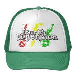 4D Hat