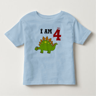 4th birthday party gift, dinosaur stegosaurus toddler t-shirt