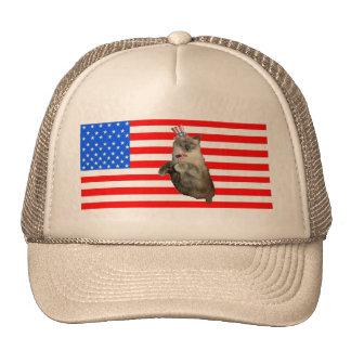 4th of July Cat Trucker Hats