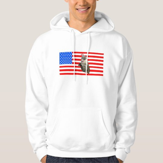 4th of July Cat Hoodie