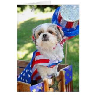 4th of July Dog Cards