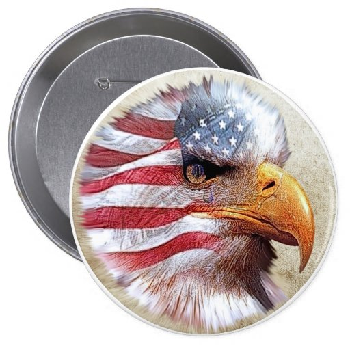 4th Of July Flag & Eagle Pin