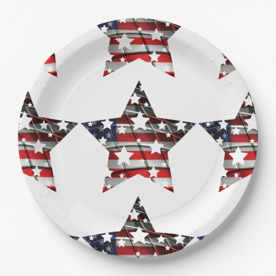 4th of July Fun Paper Plate