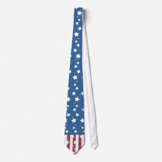 4th of July Patriotic Independence Day Tie