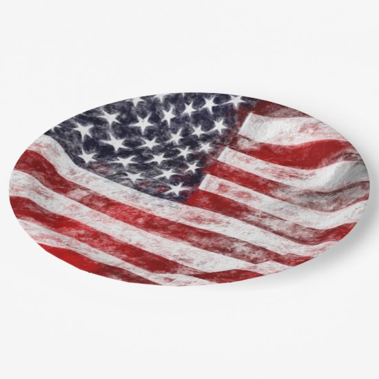 4th of July Picnic Paper Plates, American Flag Paper Plate