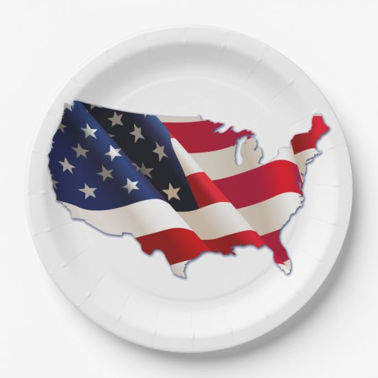 4th of July Picnic Paper Plates, USA Map, Flag Paper Plate