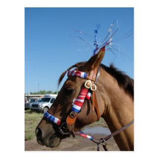 4to de caballo tarjeta postal