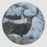 4X4 Mule deer Sticker