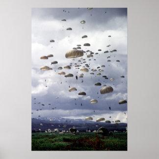 501st Para Infantry Print