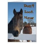 50.a tarjeta de cumpleaños de los caballos