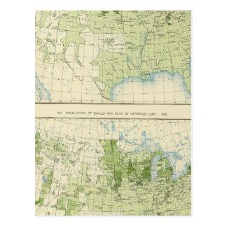 50 Barley 1890 Postcard