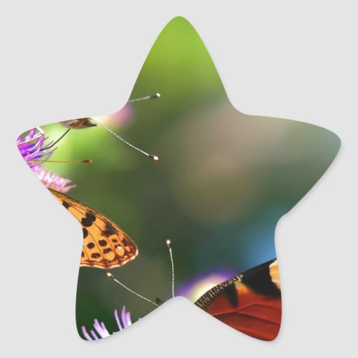 517e13867008516583.jpg star sticker