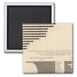 53 Negro population by states Native white 2 Inch Square Magnet