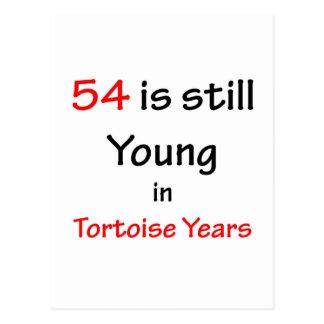 54 años de la tortuga postal