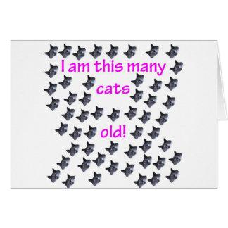 54 cabezas del gato viejas tarjeta de felicitación