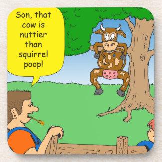 597 nuttier than squirrel poop cartoon coaster