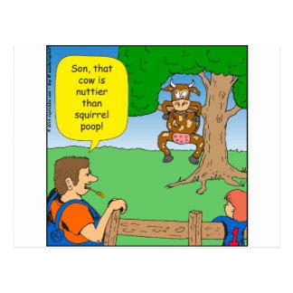 597 nuttier than squirrel poop cartoon postcard