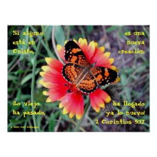 5:17 de la mariposa Flower-2 Corintios Póster