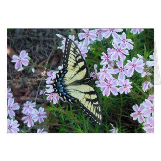 5 20 2009 087, Swallowtail Card
