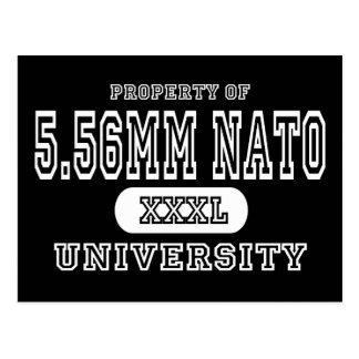 5.56 NATO Univeristy Dark Postcard
