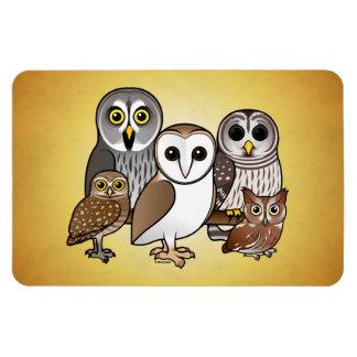 5 Birdorable Owls Rectangular Photo Magnet