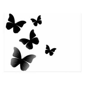 5 Black Butterflies Postcard