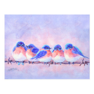 5 BLUEBIRDS on a WIRE by SHARON SHARPE Postcard