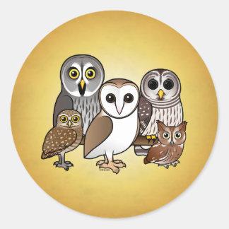 5 búhos de Birdorable Pegatina Redonda