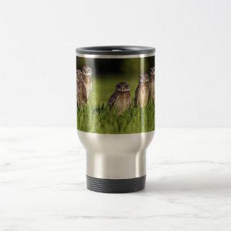 5 Burrowing Owls Athene Cunicularia 15 Oz Stainless Steel Travel Mug