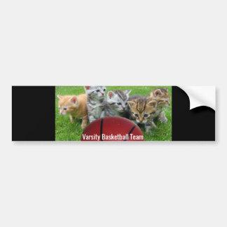 5 Cats Form a Basketball Team Bumper Sticker