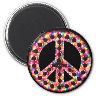 5-color peace magnet